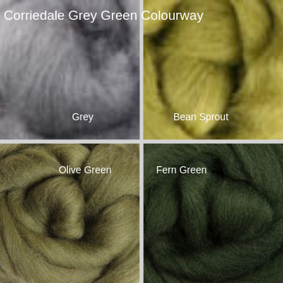 Corriedale Four Pack - Grey Green