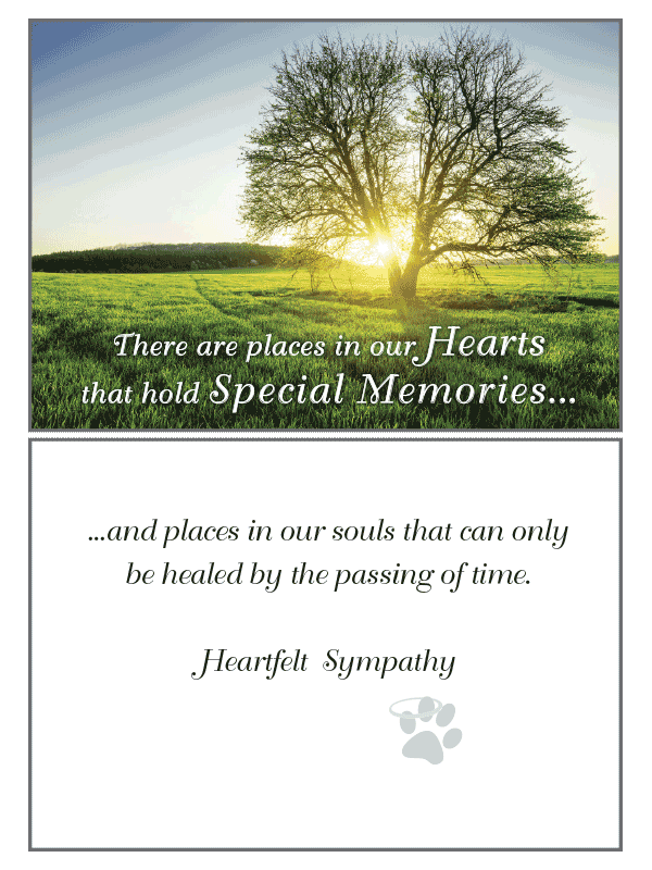 There Are Places Sympathy Card