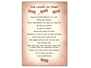Dog Lessons Blank Card - Rocky & Maggie's Pet Boutique and Salon