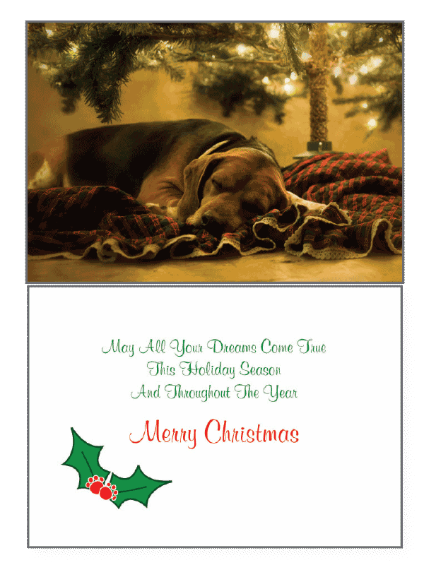 Dog Dreaming Tree Holiday Greeting Card - Rocky & Maggie's Pet Boutique and Salon