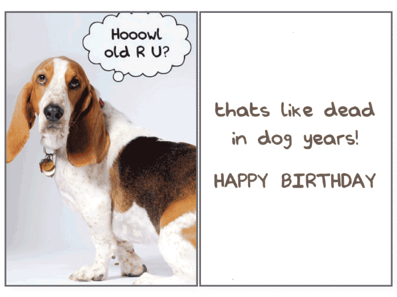 Hoowl Old R U Birthday Card