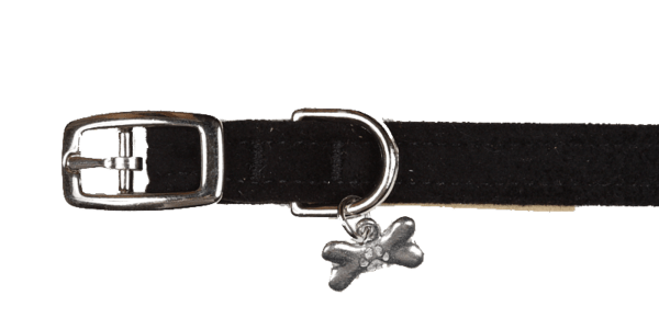 "1/2"" Plain Collar - Rocky & Maggie's Pet Boutique and Salon"