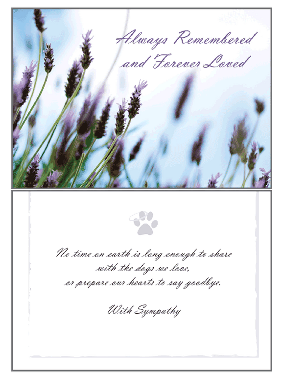 Always Remembered Sympathy Card - Rocky & Maggie's Pet Boutique and Salon