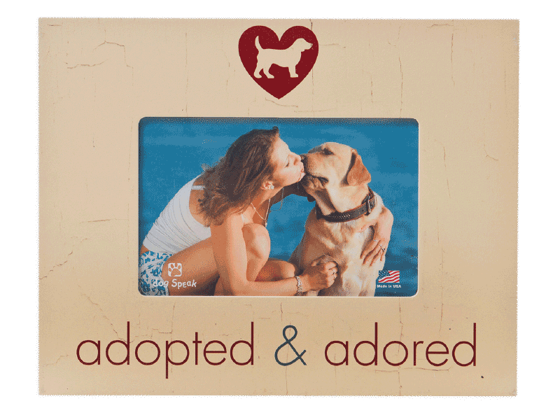 Adopted And Adored Frame - Rocky & Maggie's Pet Boutique and Salon