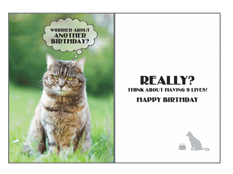 9 Lives Birthday Card - Rocky & Maggie's Pet Boutique and Salon