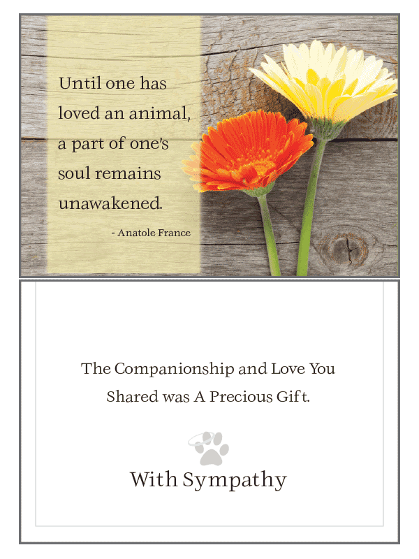Until One Has Loved Sympathy Card