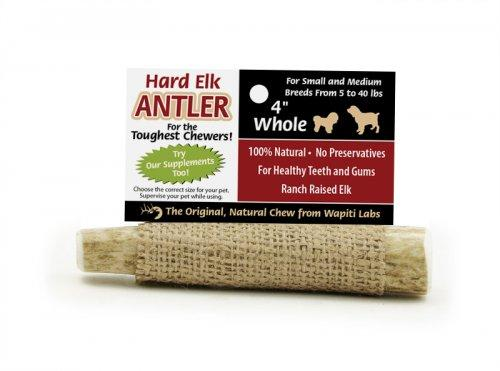 Antler from Wapiti - Rocky & Maggie's Pet Boutique and Salon