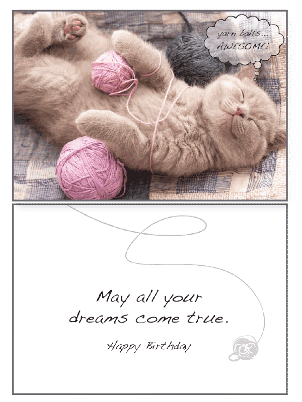 Cat Yarn Balls Birthday Card - Rocky & Maggie's Pet Boutique and Salon