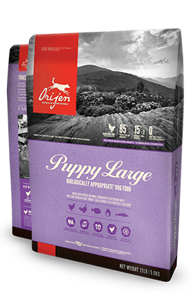 Orijen Puppy Large Breed Dog food - Rocky & Maggie's Pet Boutique and Salon