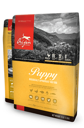 Orijen Puppy Dog food - Rocky & Maggie's Pet Boutique and Salon