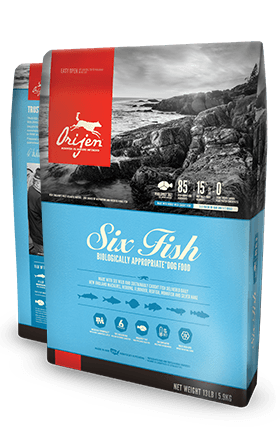 Orijen Six Fish Dog food - Rocky & Maggie's Pet Boutique and Salon