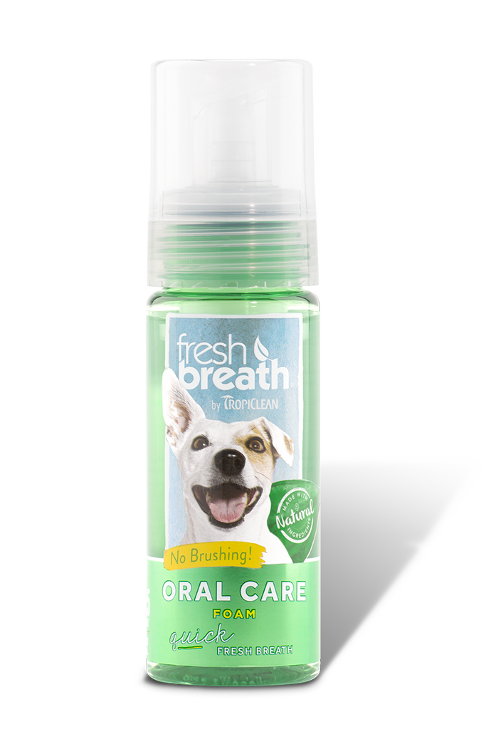 Fresh Breath Mint Foam, 4.5oz