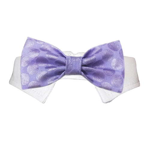 Dylan Bow Tie - Rocky & Maggie's Pet Boutique and Salon
