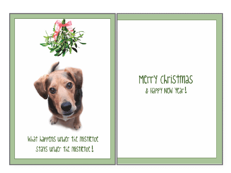 What Happens Under the Mistletoe Holiday Greeting Card