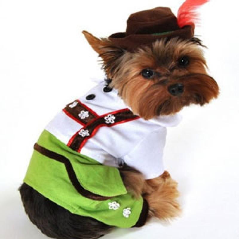 Alpine Boy Costume - Rocky & Maggie's Pet Boutique and Salon