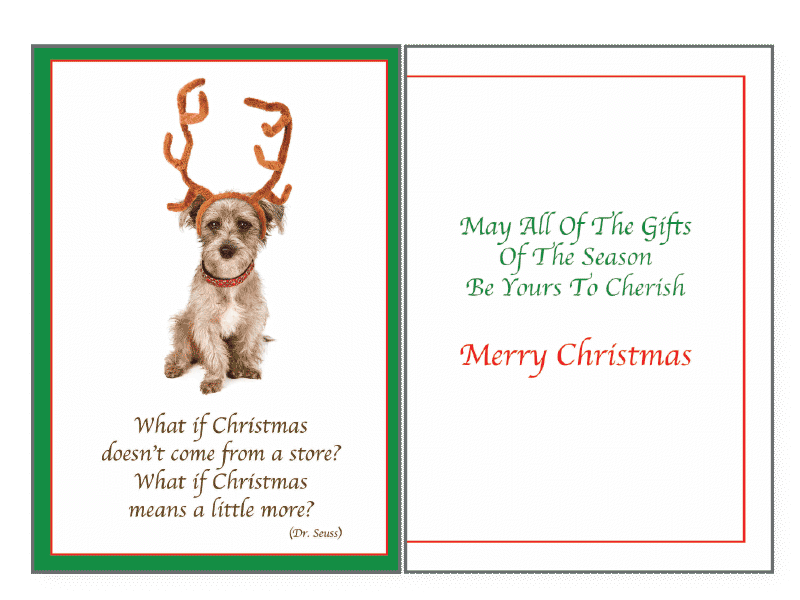 What If Christmas Holiday Greeting Card