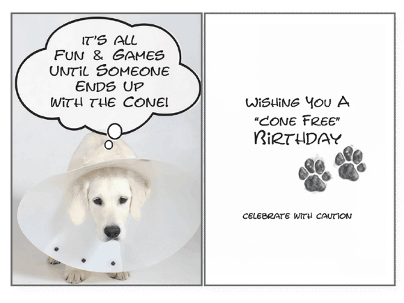 Cone Free Brthdy Birthday Card - Rocky & Maggie's Pet Boutique and Salon
