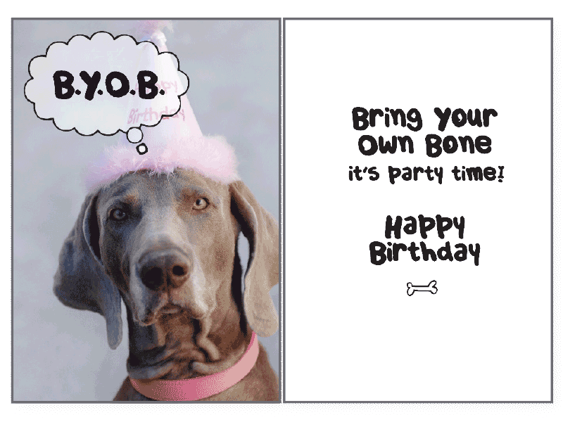 BYOB Birthday Card Rocky Maggies Pet Boutique And Salon