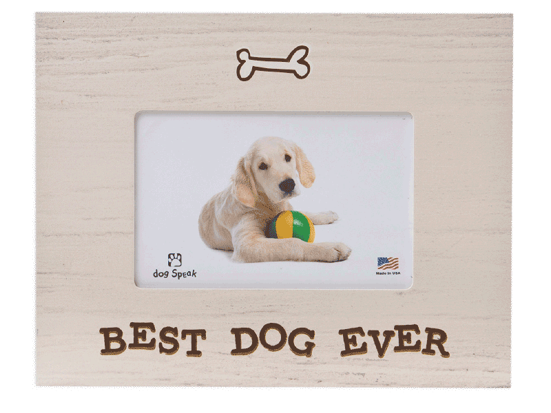 Best Dog Ever Frame - Rocky & Maggie's Pet Boutique and Salon