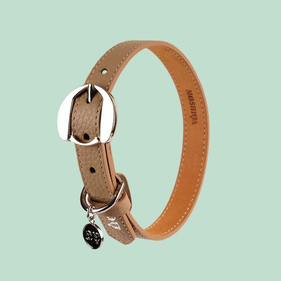 Hachiko Dog Collar