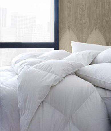 Prima Loft Duvet Fillers by Legacy Home
