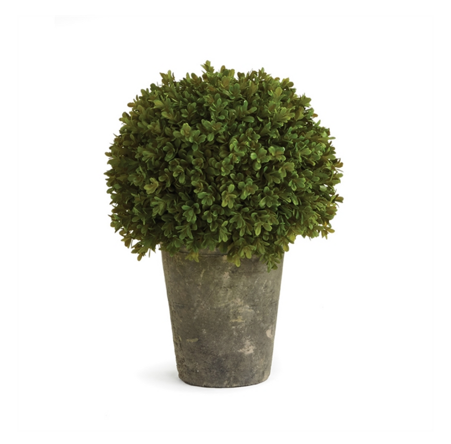 BARCLAY BUTERA FAUX BOXWOOD SHRUB POTTED 13.5