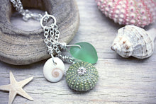 Sea Urchin, Seaglass and Shivas Eye Necklace