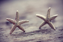 Starfish Earrings Star Fish Studs