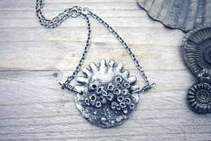 Sanddollar Necklace Sand Dollar Fossil