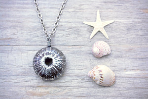 Sea Urchin Necklace Shell Pendant