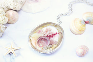 Limpet Seashell Necklace Eco Friendly