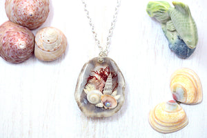 Rock Pool Necklace Mermaid Shell