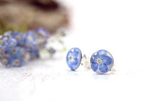 Forget Me Not Earrings Botanical