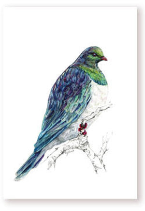 NZ Native Birds by Artist Emilie Geant