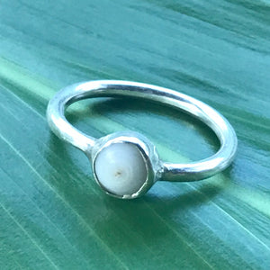 PUKA SHELL RING