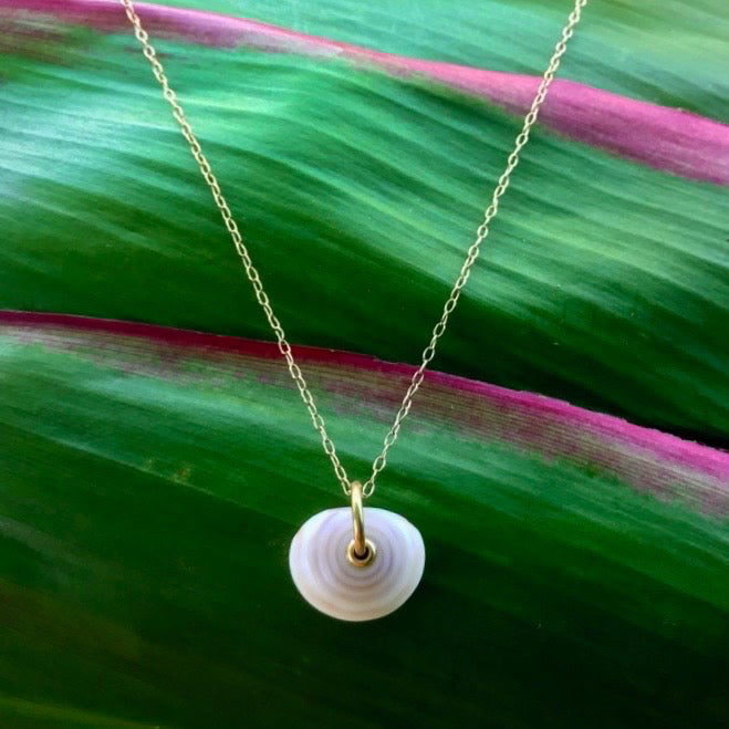 SINGLE PUKA CHAIN NECKLACE