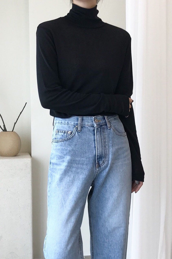 Light Weight Turtleneck