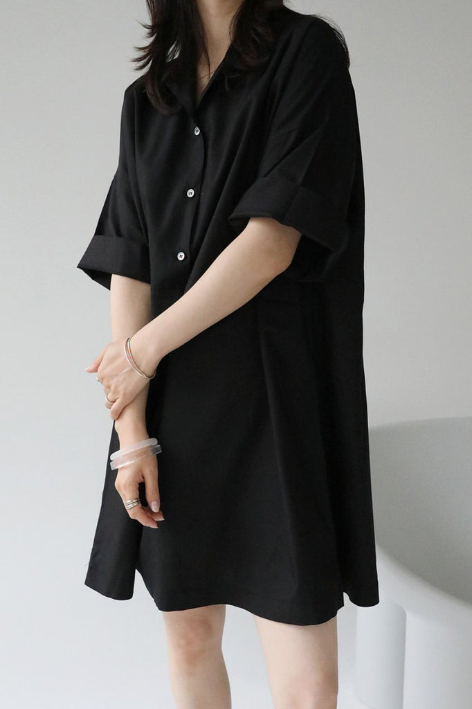 Lienne Shirt Dress