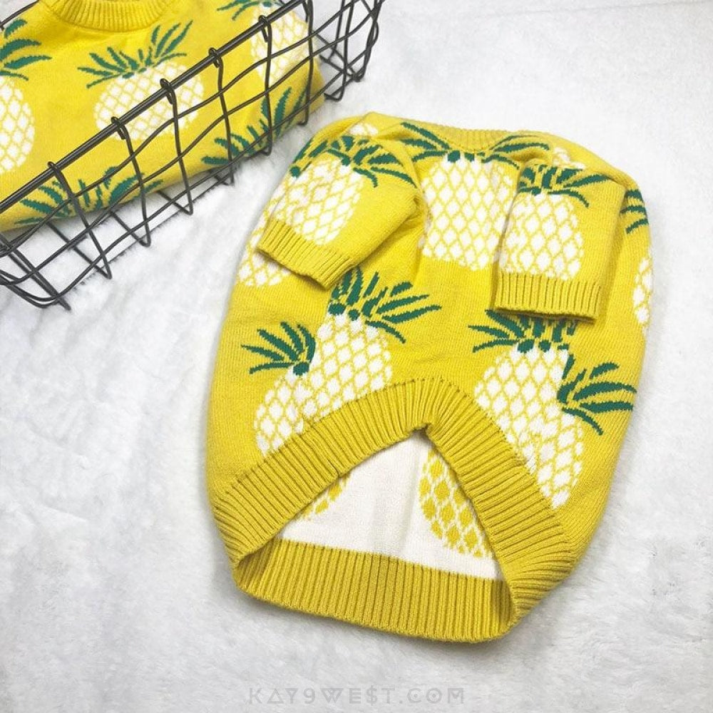 Pineapple Express Sweater Pet Apparel