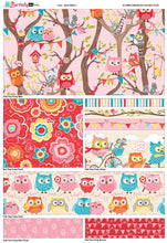 owl fabric, 100% cotton fabric, quilting cotton