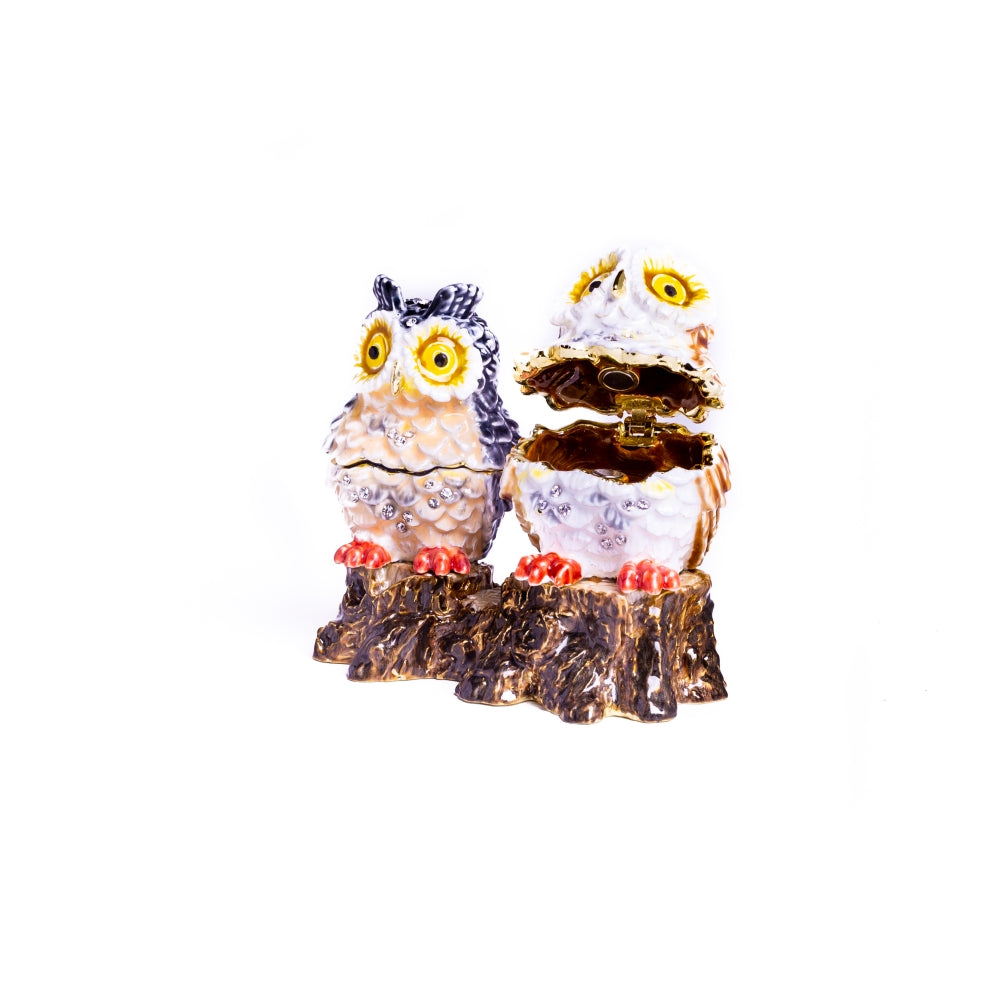 Two Owls Sitting on Tree Trunk