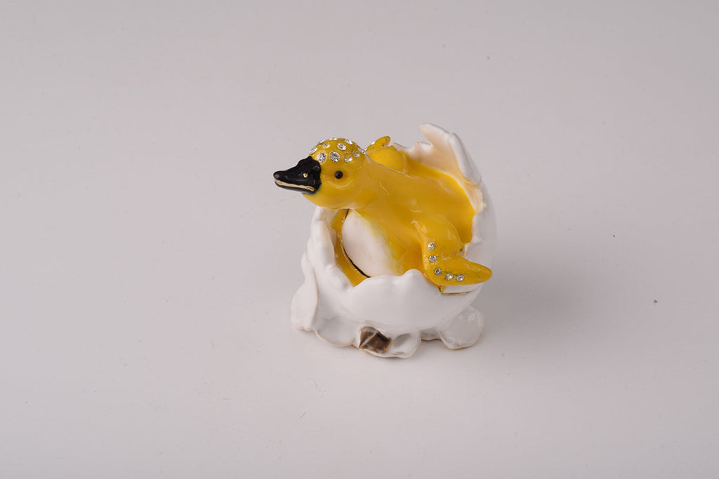 Duck Coming out of Eggshell