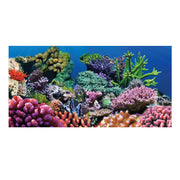 Sporn® Aquatics: Coral Cling Background