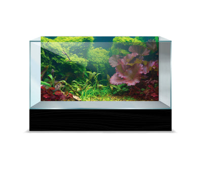Sporn® Aquatics: Tropical Cling Background