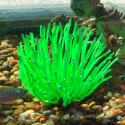Sporn® Aquatics: XL Green Anemone