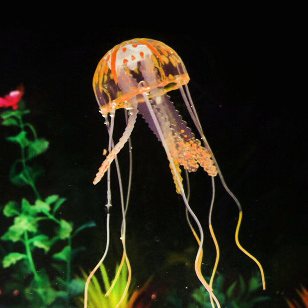 Sporn® Aquatics: Jellyfish
