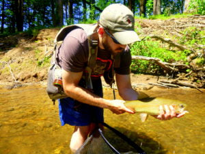 Water Temperature and What It Means For Trout