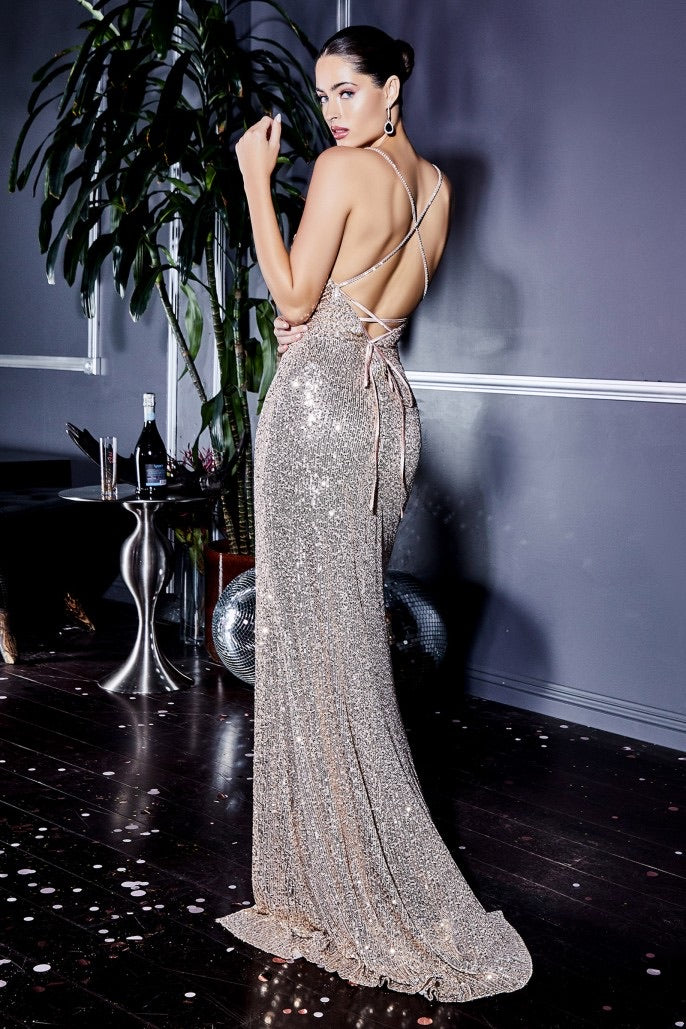 SPARKLING CHAMPAGNE GOWN | CF199