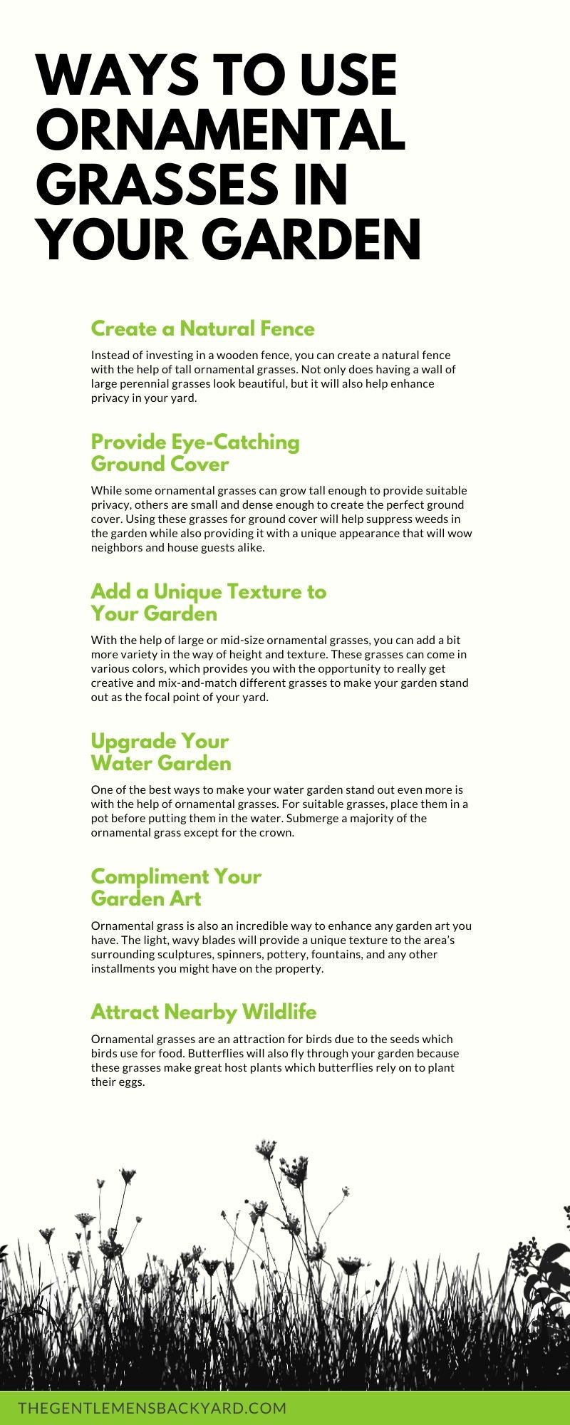 Ornamental Grasses in Your Garden Infographic