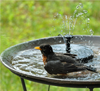 Zengarden™ Solar Powered Fountain Pump